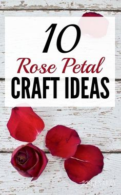 What great ideas to use rose petals from Valentine's Day, a wedding or an anniversary to create crafts, gifts or special keepsakes! These 10 rose petal craft ideas using dried rose petals would work with other flowers too. Rose Petals Craft, Dried Rose Petals, Flower Petals, Dried Flowers, Craft Flowers, Rose Petal Uses, Rose Petal Beads, Uses For Rose Petals, Pressed Roses