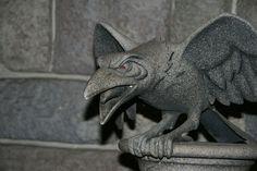 Um corvo que se transforma em forma humana e é a mão direita de Malévola em A Bela Adormecida da Disney.