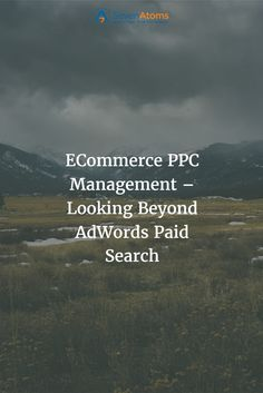 ECommerce PPC Management – Looking Beyond AdWords Paid Search