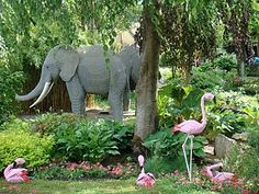 elephants and flamingos