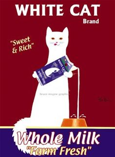 lgb1538+white-cat-by-ken-bailey-art-print.jpg (257×350)