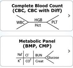 complete blood count normal ranges - Google Search