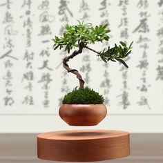 2016 japon high-tech produits lévitation air bonsaï (aucune plante) en céramique pot de fleur culture livraison gratuite(China (Mainland))