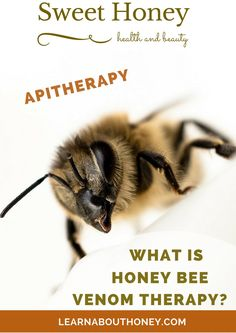 Bee venom treatment makes use of the poison from bees to deal with disorders ( rheumatoid arthritis, nerve pain (neuralgia), multiple sclerosis (MS),.. ) that do not react to the conventional medicine.