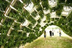 Living Pavilion was a curved installation with interior green living walls and ceiling made from recycled milk crates.