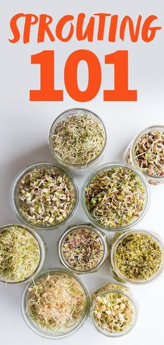 Its time for Sprouting 101 Learn how to sprout the benefits of sprouting and troubleshoot your sprouts in this extensive overview Matcha Benefits, Coconut Health Benefits, Stop Eating, Clean Eating, Healthy Eating, Healthy Snacks, Growing Sprouts, Roh Vegan, Sprouting Seeds