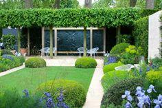jardin moderne bien arrangé de buis en boule, gazon et arbres