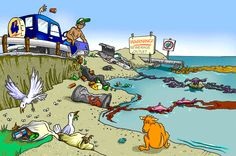 Water+Pollution+–+Effects+and+Prevention