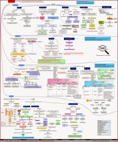 Pharmacokinetic_drug_drug_interactions_zoom_out_pharmacotherapy.jpg (1051×1264)