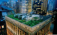도시를 더 푸르게 만드는 '친환경 옥상정원'