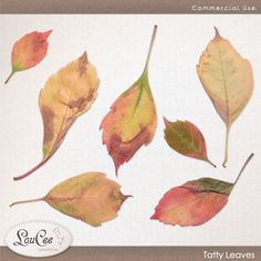 Tatty Leaves by #LouCee Creations. #sugarhillco