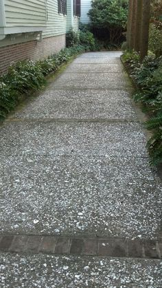 Exposed Aggregate Concrete With Sealer And Saw Cut Joints