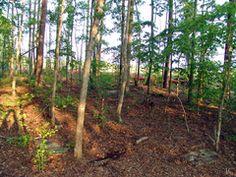 Austell Plantation Cemetery - Bomar - Rice 1840