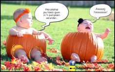 photo by Melissa B. The Ellen Degeneres Show asked viewers to send in pictures of babies sitting in pumpkins and, as you might expect, they are chock full