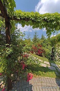 Bratislava - Botanická záhrada 3