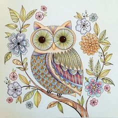 The Owl. #elerifowler #joyousbloomstocolor #lyrarembrandtpolycolor
