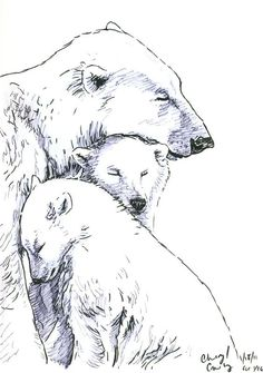 Polar Bear sketch by silvercrossfox on DeviantArt – Tattoo Sketches & Tattoo Drawings Baby Animal Drawings, Animal Sketches, Drawing Sketches, Drawings Of Bears, Polar Bear Drawing, Polar Bear Tattoo, Baby Bear Tattoo, Grizzly Bear Tattoos, Bear Sketch
