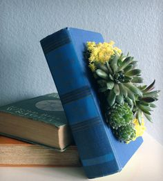 UPCYCLED BOOK PLANTERS lined with a waterproof seal to make it a lasting decorative piece. Check them out!
