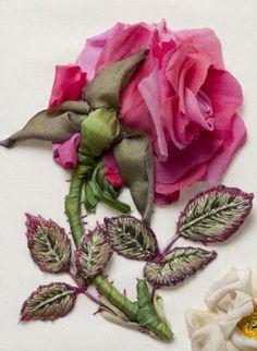 Rose Gaujard by Di van Niekerk