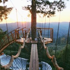 This Guy's Built the World's Coolest Home: A Treehouse with a Skate Bowl, a Hot Tub and an Incredible View Foster Huntington's dream house is so sick   Read more at http://mpora.com/articles/treehouse-worlds-coolest-home#Gu2j3RMVS96jDHxe.99