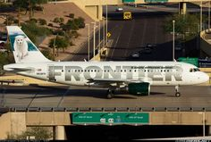 Frontier - Airbus A319
