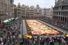 This morning the flower carpet was realized on Brussels' Grand Place. This year's design is inspired by japanese art. www.flowercarpet.be