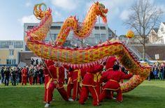 Chinees Nieuwjaar in Rotterdam | The Netherlands