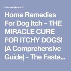 Home Remedies For Dog Itch – THE MIRACLE CURE FOR ITCHY DOGS! (A Comprehensive Guide) - The Fastest Poodle -- TheFastestPoodle Heat Stroke In Dogs, Dog In Heat, Homeopathic Remedies, Home Remedies, Natural Remedies, Itchy Dog, Animals Information, Fluffy Kittens, Dog Itching
