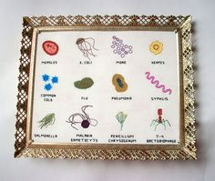 12 microbes of your choice, cross stitched into an 8x10 sampler ---The Story--- GERMS! Theyre everywhere. You cant avoid them, not entirely -- so why not incorporate them into your decor? If youre into science, or just germs, or cleanliness, or if youre a hypochondriac, you might