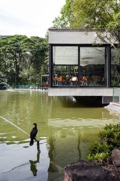 Japanese Restaurant Floating Above a Lake in Sao Paulo, BrasilThe Lake's Restaurant is a Japanese restaurant showcasing the essence of simplicity and purity through its sleek architecture merging two volumes. Floating Architecture, Japanese Architecture, Architecture Design, Low Maintenance Garden Design, Traditional Landscape, Civil Engineering, Cool Landscapes, Restaurant Design, Amazing Gardens