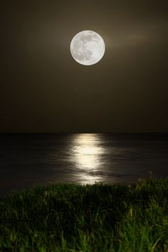 Moon- finding the beauty at night time. how the moon reflects off the lake.