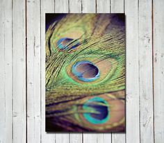 Peacock photograph - metallic bright colorful wall art - home decor - peacock feathers - green purple blue - 8x12 metallic print