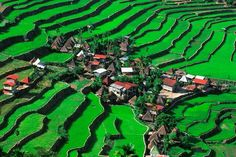 Batad in Banaue ifugao Philippines Banaue Rice Terraces, Philippines, Tourist Sites, American Country, Ancient Civilizations, World Heritage Sites, Aerial View, The Good Place, City Photo