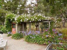 chicken coop garden show - Google 検索