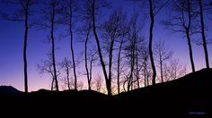 Sunset landscape photo Summer's End  Telluride by Xipitipix, $28.00