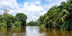 Blick auf den Fluss Frio