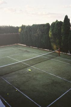 tennis court with cypress trees as screen