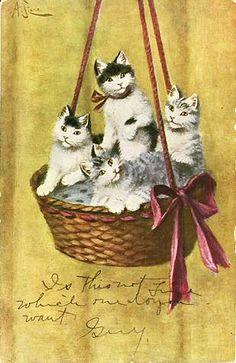 Vintage Victorian Cats in a Hanging Basket Postcard with Hand Writing
