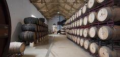 De wijnvaten van Esporão, een prachtig gezicht!
