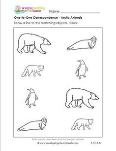arctic animal worksheets - Google Search