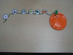 Pumpkin Life Cycle. This will be great before going to the pumpkin patch this fall