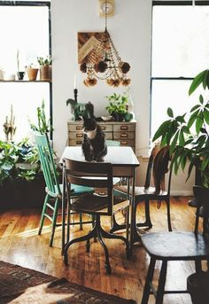 woontrend botanisch interieur - Roobol