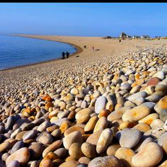 Pebbles of Chesil Beach.