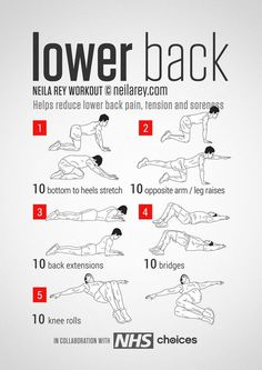 Back Workout / Helps reduce lower back pain, tension, stiffness & soreness.Lower Back Workout / Helps reduce lower back pain, tension, stiffness & soreness. Fitness Workouts, At Home Workouts, Fitness Tips, Hero Workouts, Killer Ab Workouts, Fitness Foods, Body Fitness, Health Fitness, Neila Rey Workout