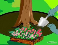 How ro plant a flower bed around a tree...