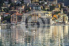 Immagine venduta su Dreamstime Rapallo - Download From Over 27 Million High Quality Stock Photos, Images, Vectors. Sign up for FREE today. Image: 39013529