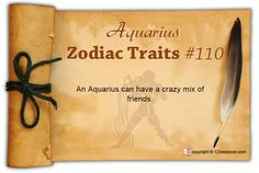 An Aquarius can have a crazy mix of friends.