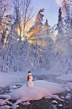 Snowman standing on a small island in the middle of a stream with sunrays shining through fog and hoar frosted trees in the background, Russian Jack Springs Park, Anchorage, Southcentral Alaska, Winter. Winter Snow, Winter Time, Winter Christmas, Winter Schnee, I Love Snow, Snow Art, Snow Scenes, Winter Pictures, Winter Beauty