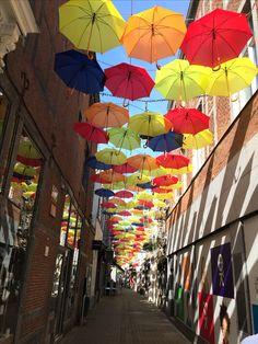 Belgium, Namur, rue Haute Marcelle été 2016.