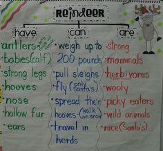 First Grade Fever!: Rockin' Reindeer Fun! & a Countdown Sale! Kindergarten First Day, Kindergarten Writing, Kindergarten Activities, Kindergarten Christmas, Classroom Activities, Preschool Science, Teaching Writing, Writing Activities, Teaching Science
